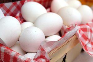 知ってお得な卵の特徴