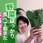 野菜中心の食生活のメリット・デメリット